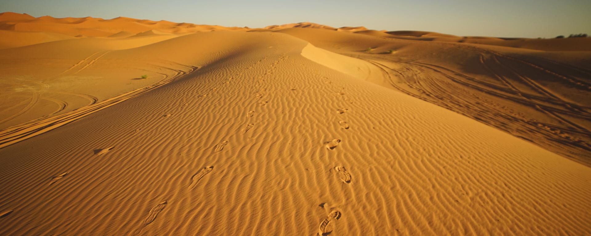 desierto active woman