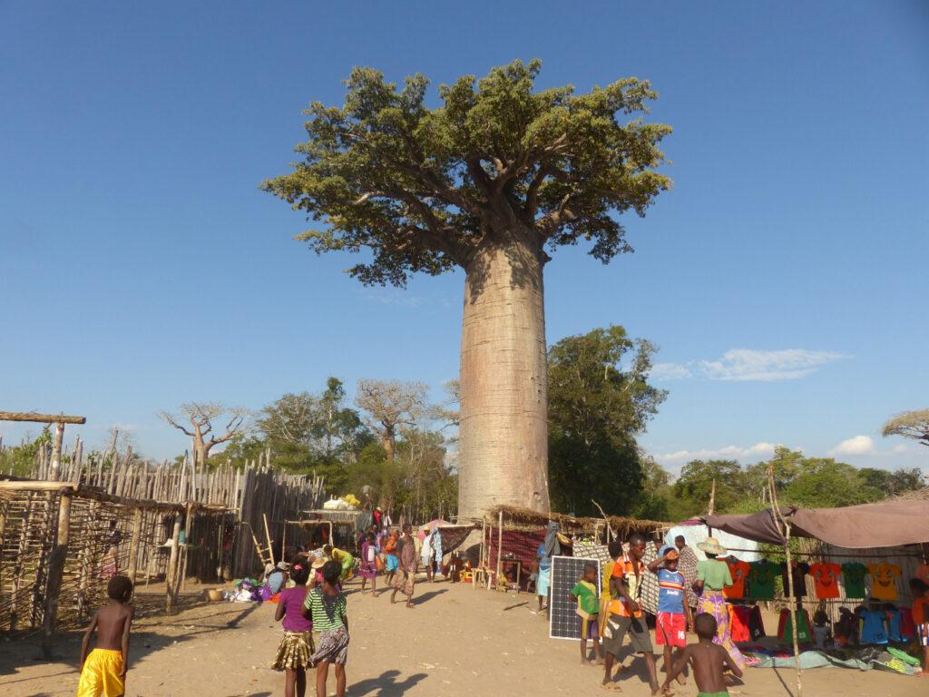Active Womnan en Madagascar